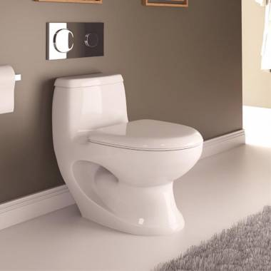 Aralia Toilet