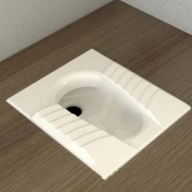 توالت زمینی نیلوفر گلسار فارس
